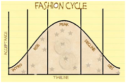 The Fashion Life Cycle