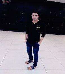 Ankush Model