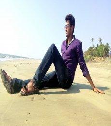 Ashwin Model