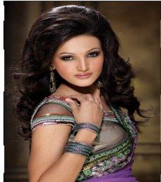 Neetika Singh Model
